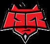 hellraisers team counter strike