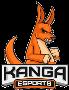 kanga esports team smite